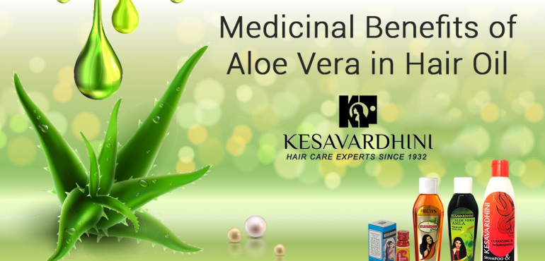 Medicinal Benefits of Aloe Vera in Hair Oil
