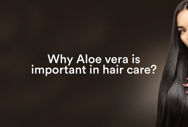 Why Aloe Vera is Important in Hair Care
